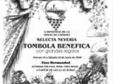 TOMBOLA BENEFICA 2018